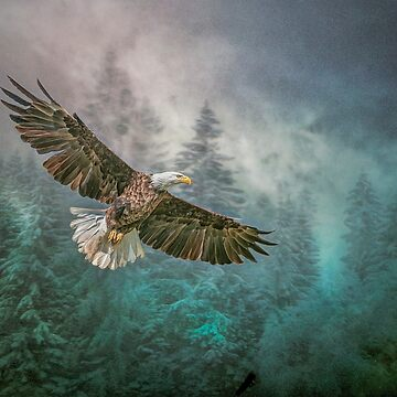 Land of The Eagle by Tarrby