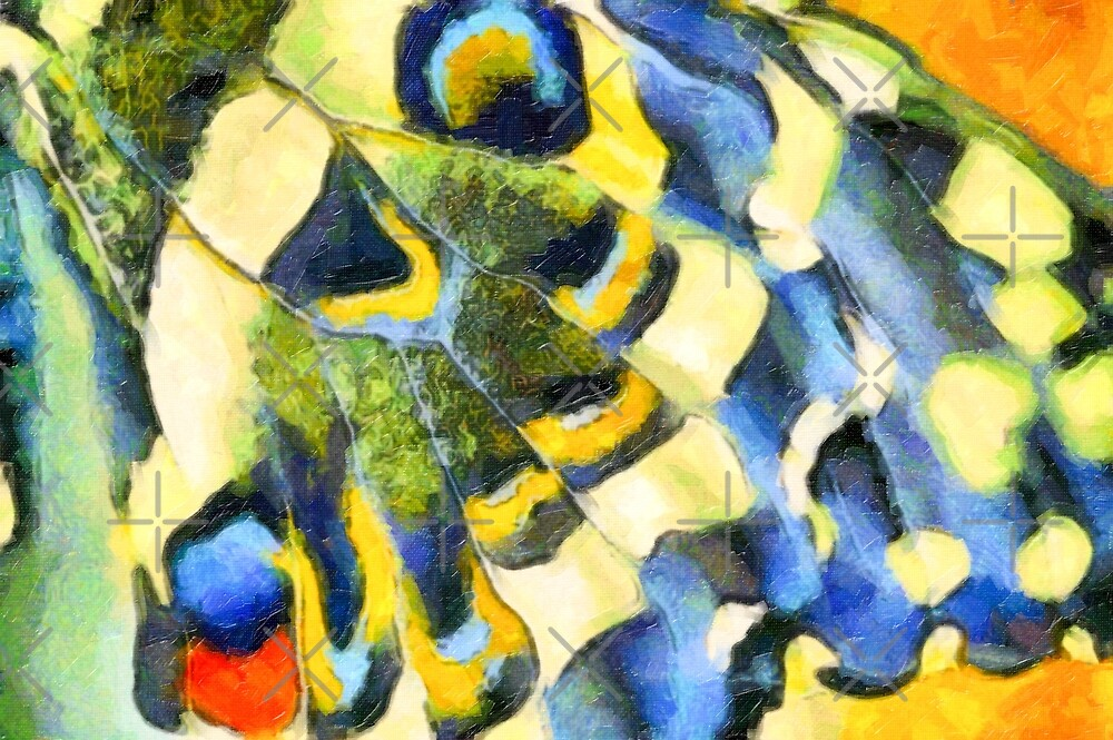 Butterfly wing by heidiannemorris