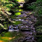 Filmore Glen State Park VII by PJS15204