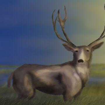 Deer In The Wetlands by mlubbe