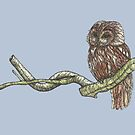 Tawny Owl on a Branch by SerenSketches