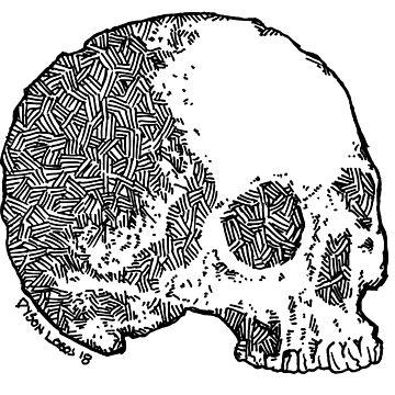 Skull Variations 2 by DysonLogos