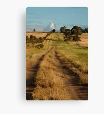 Farm Lane,Bellarine Peninsula Canvas Print