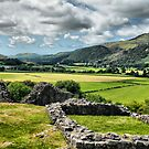 Castell y Bere  by SimplyScene
