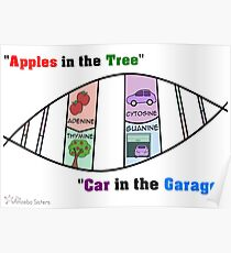 DNA Mnemonic Poster