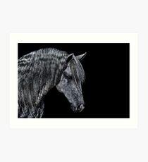 Portrait Of A Horse Fine Art Print Art Print