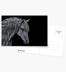 Portrait Of A Horse Fine Art Print Postcards