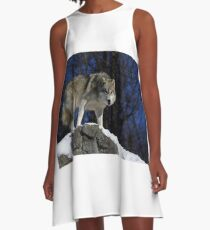 Arctic Wolf on Rock Cliff A-Line Dress