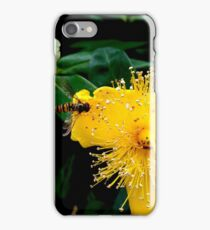 Sunshine Yellow, Bee Black & Orange iPhone Case/Skin