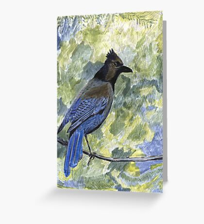 104 - STELLERS JAY  COLOURED PENCILS & WATERCOLOUR - JUNE 2003 Greeting Card