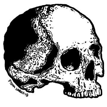 Skull Variations #5 by DysonLogos