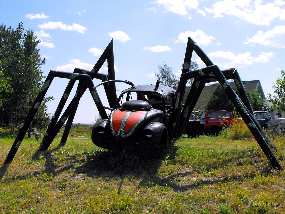 Salvaged Spider by Jan  Tribe