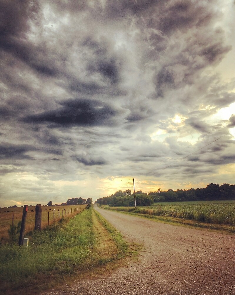 Country Road - Southeast Kansas by Robert Baker