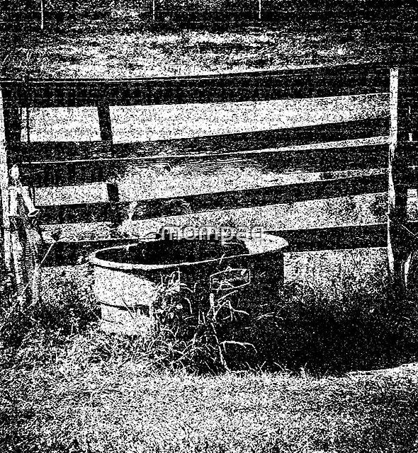 Farm Experiment by mompaq