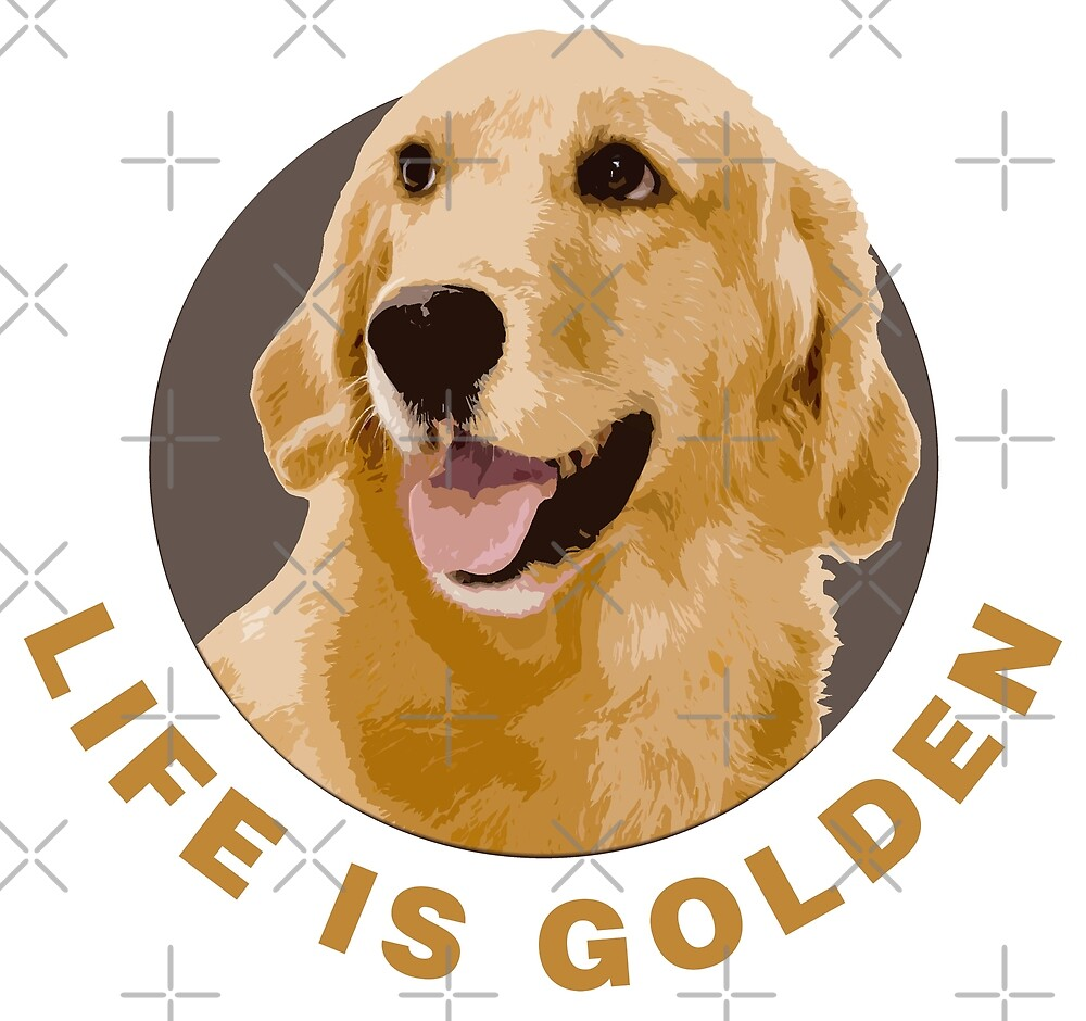 Life Is Golden, Retriever That Is by Futurebeachbum