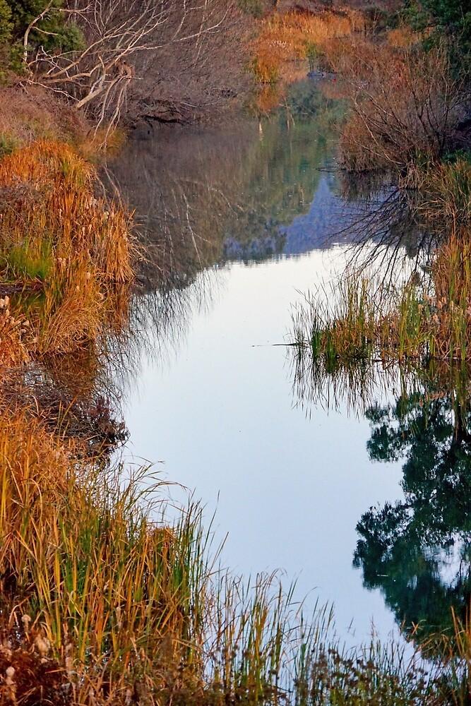 Riverside by Harry Oldmeadow
