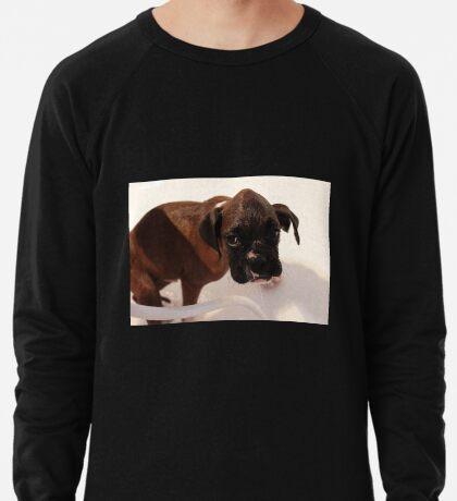 Es ist Badezeit - Boxer Dog Series Leichtes Sweatshirt