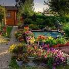 pond side HDR by lurch