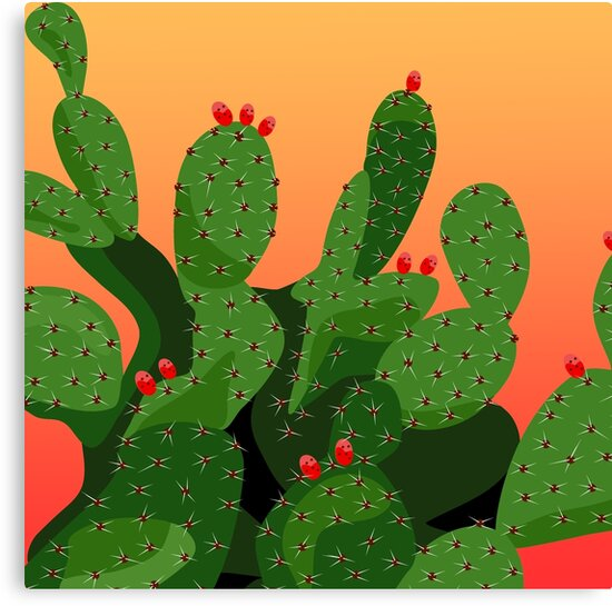 Prickly Pear Cactus Desert Sunset by Charmaine Paulson