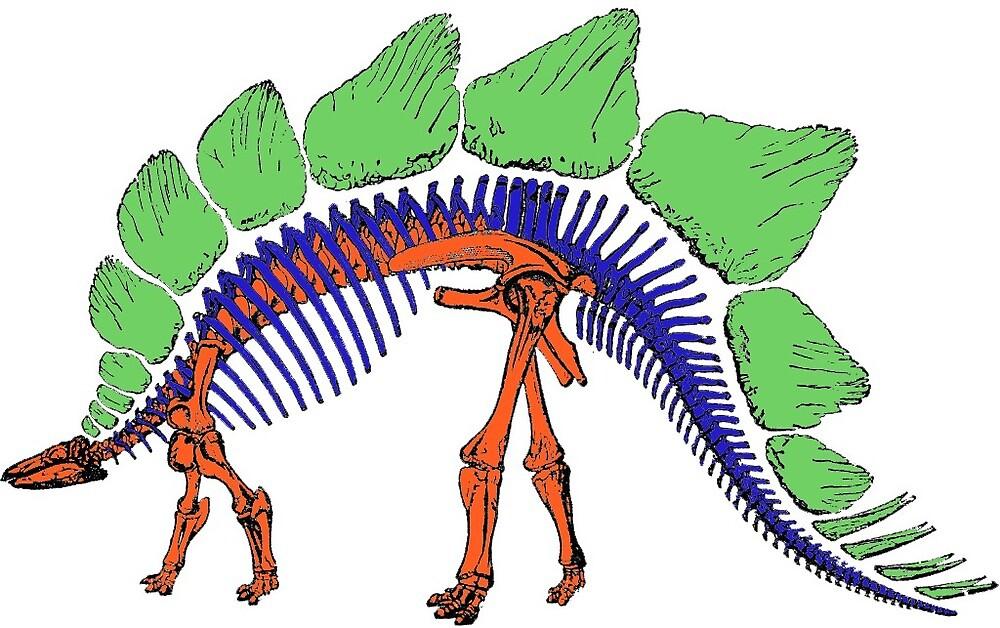 Stegosaurus Skeleton by QueenOfEndor