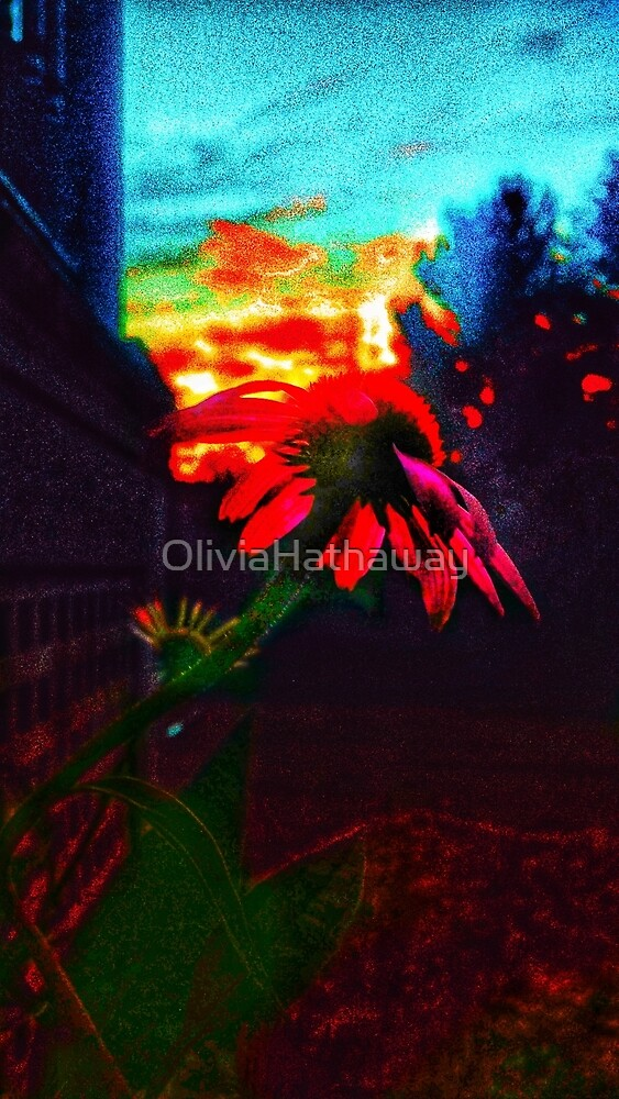 Neon Cone Flower by OliviaHathaway