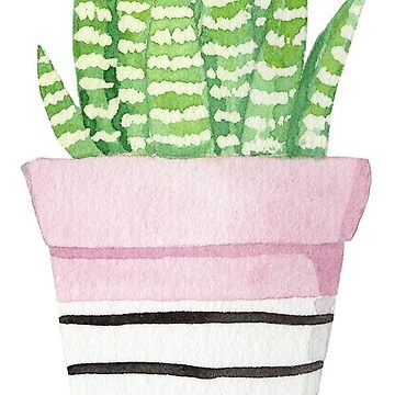 cactus by ellietography