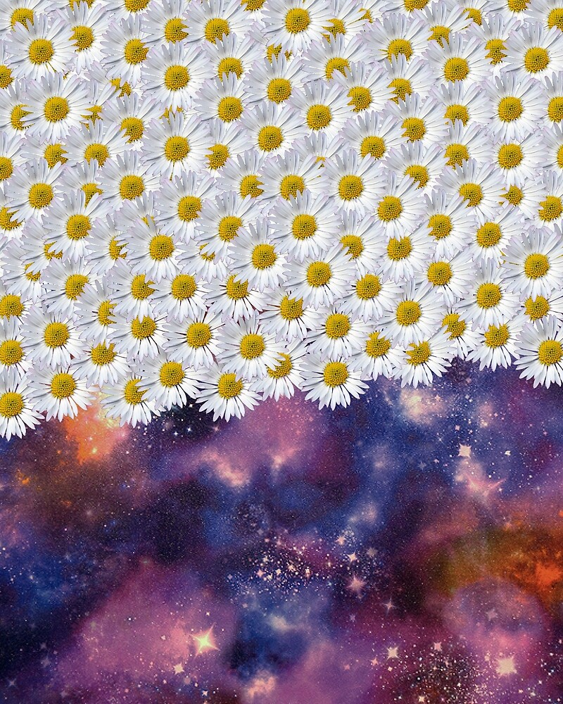 Daisys and space  by pixelpixelpixel