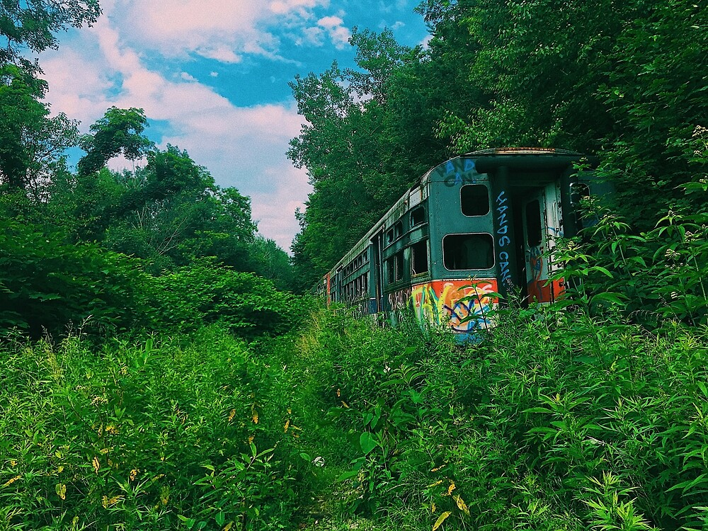 Abandoned Train in a Field by dillonkdill