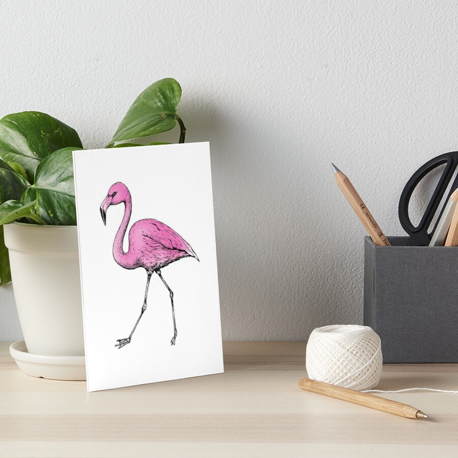 FLAMINGO - INK AND PINK by Amanda Webster