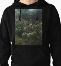 I took a stroll Pullover Hoodie
