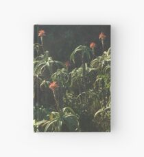 I took a stroll Hardcover Journal