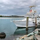 Fishing paradise 99972 by kevin Chippindall
