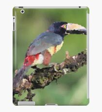 Tucan sitting on Tree Illustration iPad Case/Skin