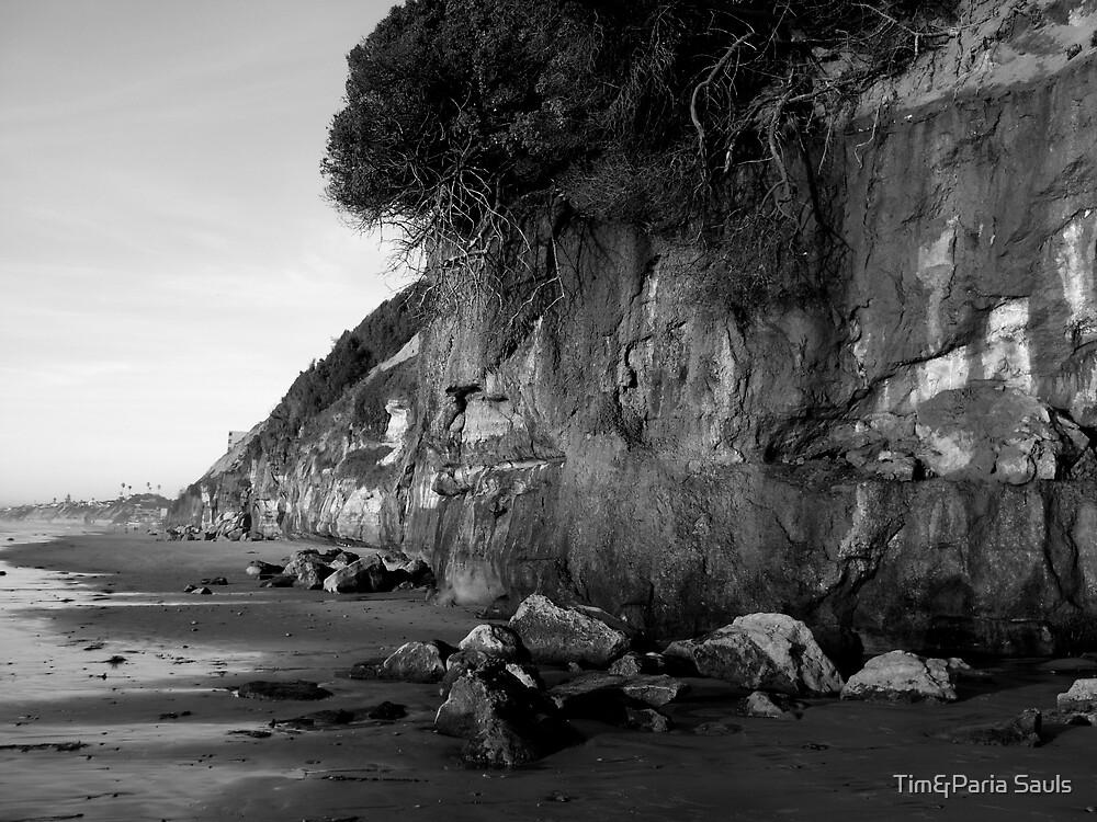 """Encinitas Beach Looking North In  B&W"" by Tim&Paria Sauls"