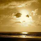 """Sepia Sunshine"" by Tim&Paria Sauls"