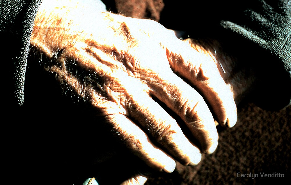 Old Man's Hands by Carolyn Venditto