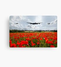 Poppy Flypast Canvas Print