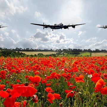 Poppy Flypast by aviationart
