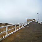 Foggy Pier by vonb