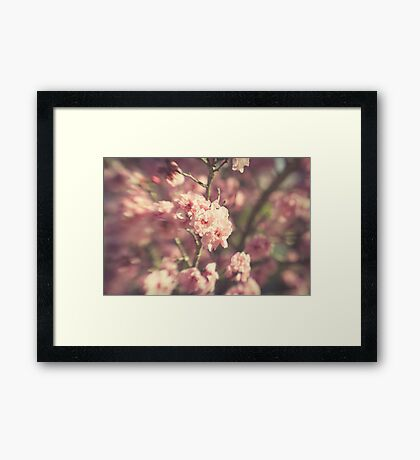 ~ the glitter of winter shines through a pale haze of spring ~ Framed Print