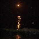 Night Light by Anthropolog