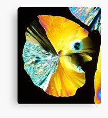 Crystal Pacman Canvas Print