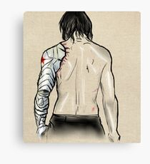 Bucky's Back.  Canvas Print