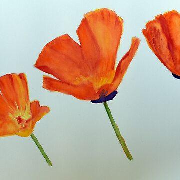 Bright Orange Poppies by lisavonbiela