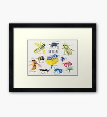 Wild Bees Illustration | Apidae Watercolor / Aquarelle Painting Framed Print