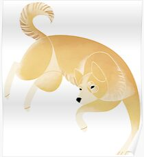 Year of the Dog - Canaan Dog Poster