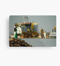 De Bougainville - Newcastle Harbour NSW Metal Print
