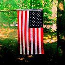 Camp Flag by mooner1