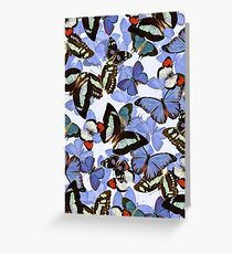 Composition With Echoed Butterflies #7  Greeting Card
