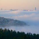 Morning fog by Moshe Cohen